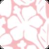 ぱんの木 ブログ